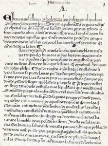 Página inicial del manuscrito de Arboleda de los enfermos, Biblioteca de San Lorenzo del Escorial.
