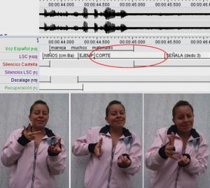 Imagen 13: La seña cortar representa (depict) espacialmente una hoja y el objeto que efectúa el corte en menos de un segundo (990 ms).