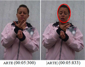 Imagen 14: Note que la seña arte es ejecutada con un gesto específico.